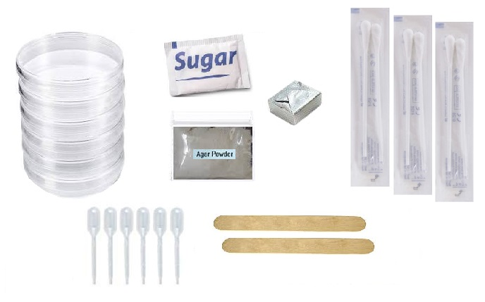 Bacteria Growing Kit: Includes Petri Dishes, Agar, Growing Medium, Pipette Droppers, Swabs, Directions