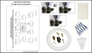 Owl Pellet Class Dissection Kit
