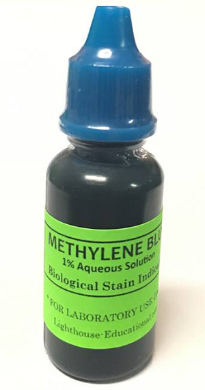 Methylene Blue Biological Stain 20 ml Dropper Bottle
